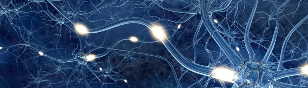 Neuroleadership Blog
